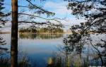 Озеро Поныхарь — место для рыбака