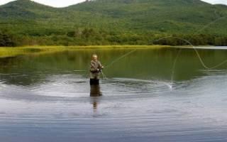 Сухая мушка: техника ловли, снасти