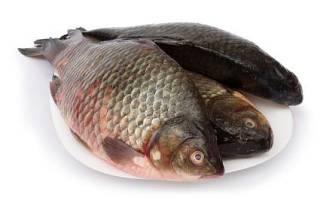 Карась в духовке — рыбные рецепты