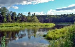 Рыбалка на Рузском водохранилище с Дмитрием