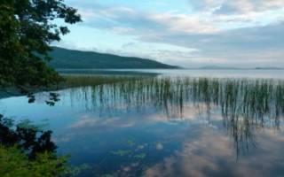 Тальми озеро — место для рыбака