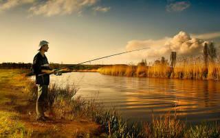 Мориловчиха — место для рыбака