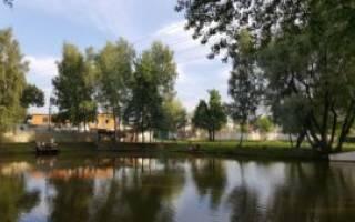 Щуковское водохранилище — место для рыбака