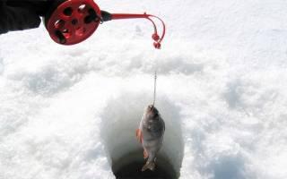 Рыбалка на Волге и Ахтубе в декабре