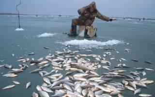 Ольдой — место для рыбака