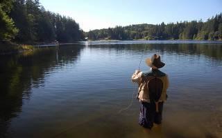 Шача (Рязанская область) — место для рыбака
