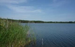 Мезенцево озеро — место для рыбака