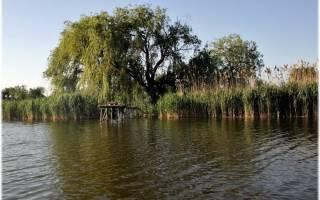Кирпили — место для рыбака